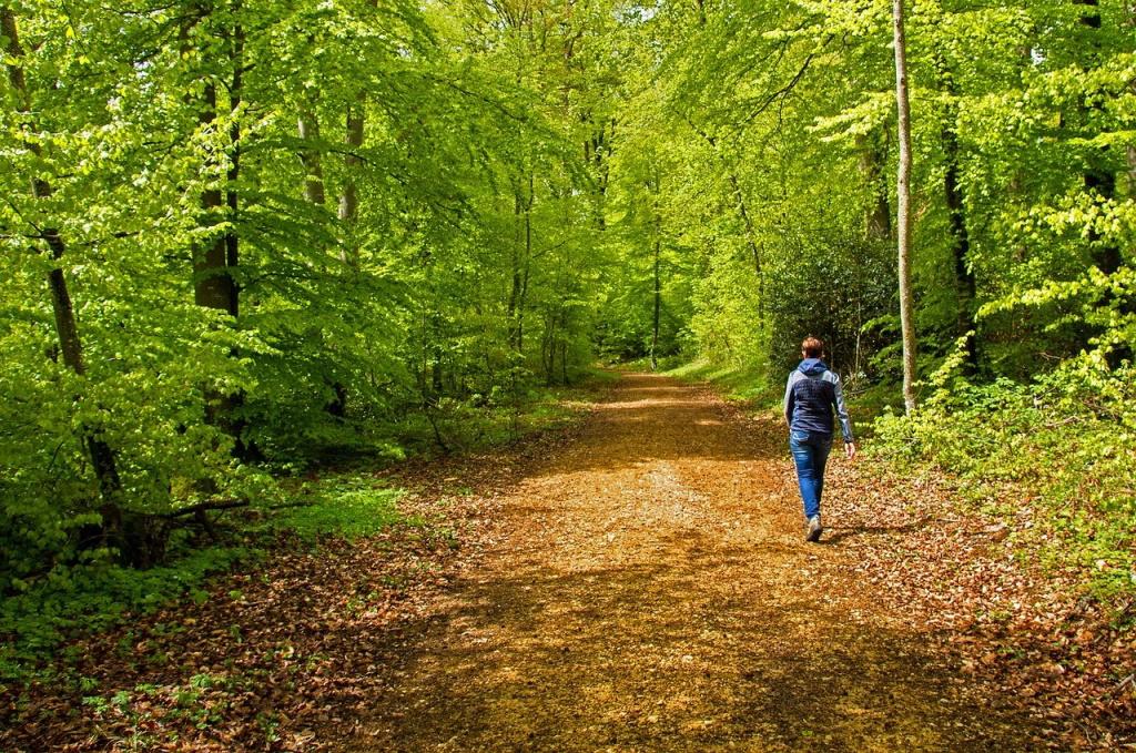 Ein Spaziergang hilft beim Abschalten im Homeoffice