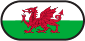 Euro 2016 Wales flag